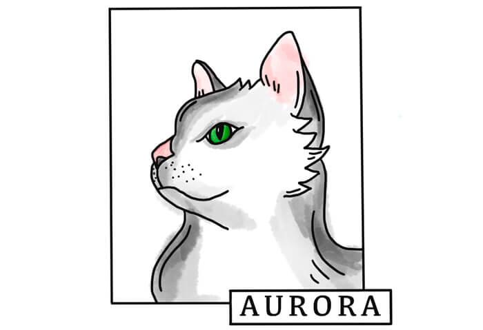 Ipad Procreate Illustration von einer Katze